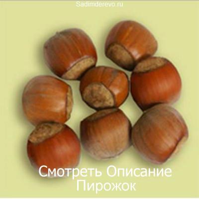 Фундук Пирожок